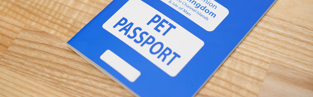 Brexit – travelling with your pet