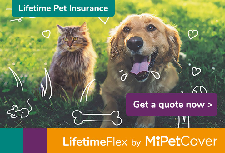 Get a quote for MiPet Cover LifetimeFlex
